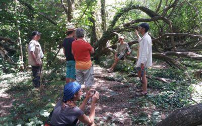 Protéger la zone naturelle autour du ruisseau des Chers